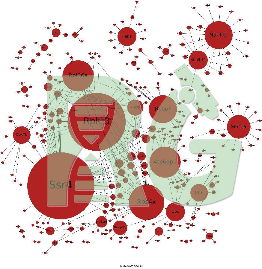 转录组分析 - 上海若谷生物科技有限公司